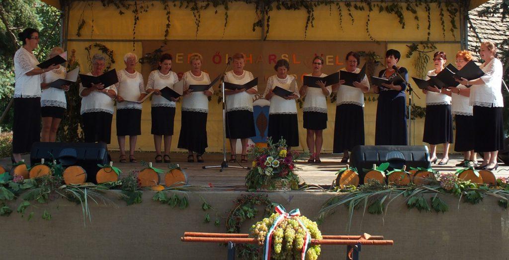Az énekkar a helyi rendezvényen szüreti dalokat énekel a feldíszített színpadon.